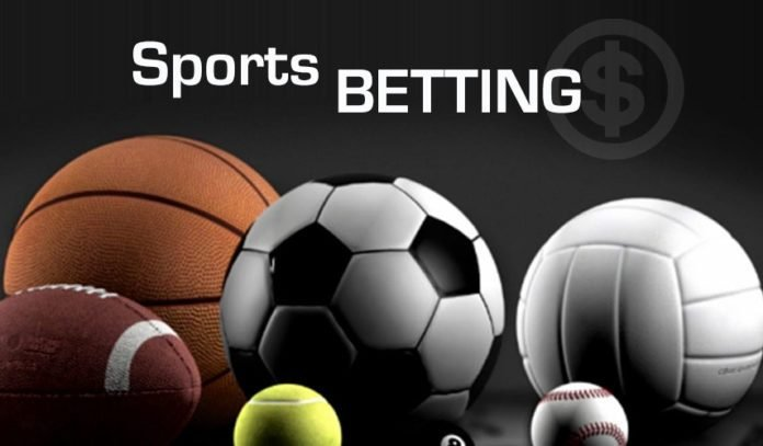 Sport betting site in nigeria dog racing betting software