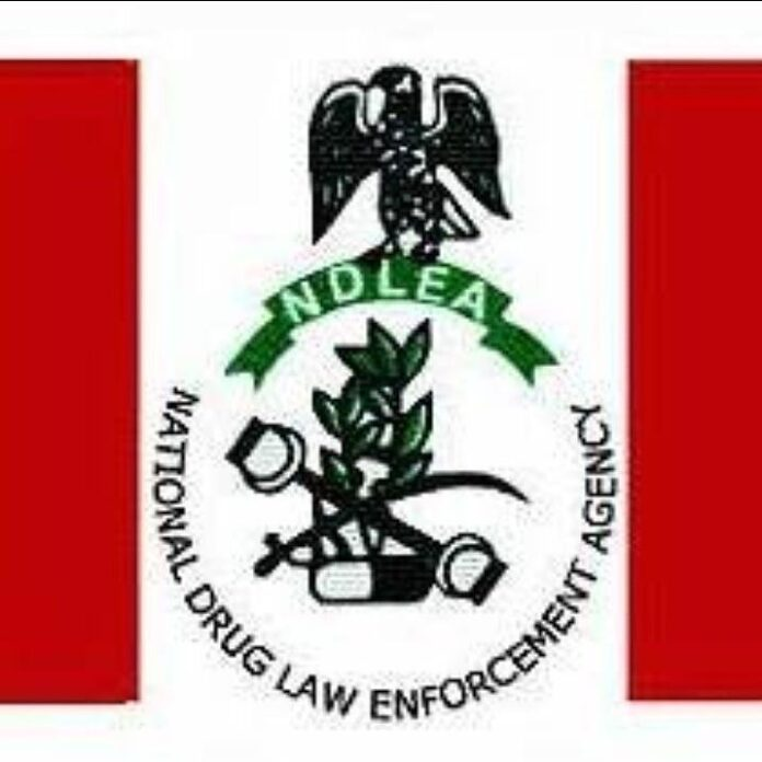National Drugs Law Enforcement Agency Recruitment Process[ndlea.gov.ng]
