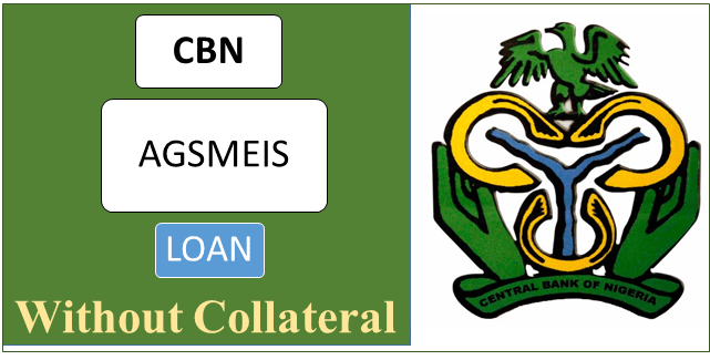 How to Access CBN AGSMEIS Loan For SME's and Agricultural Businesses Without Collateral