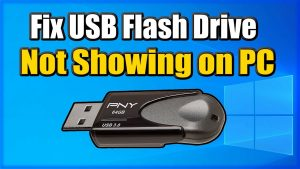 What to Do When Your USB Drive Is Not Showing Up